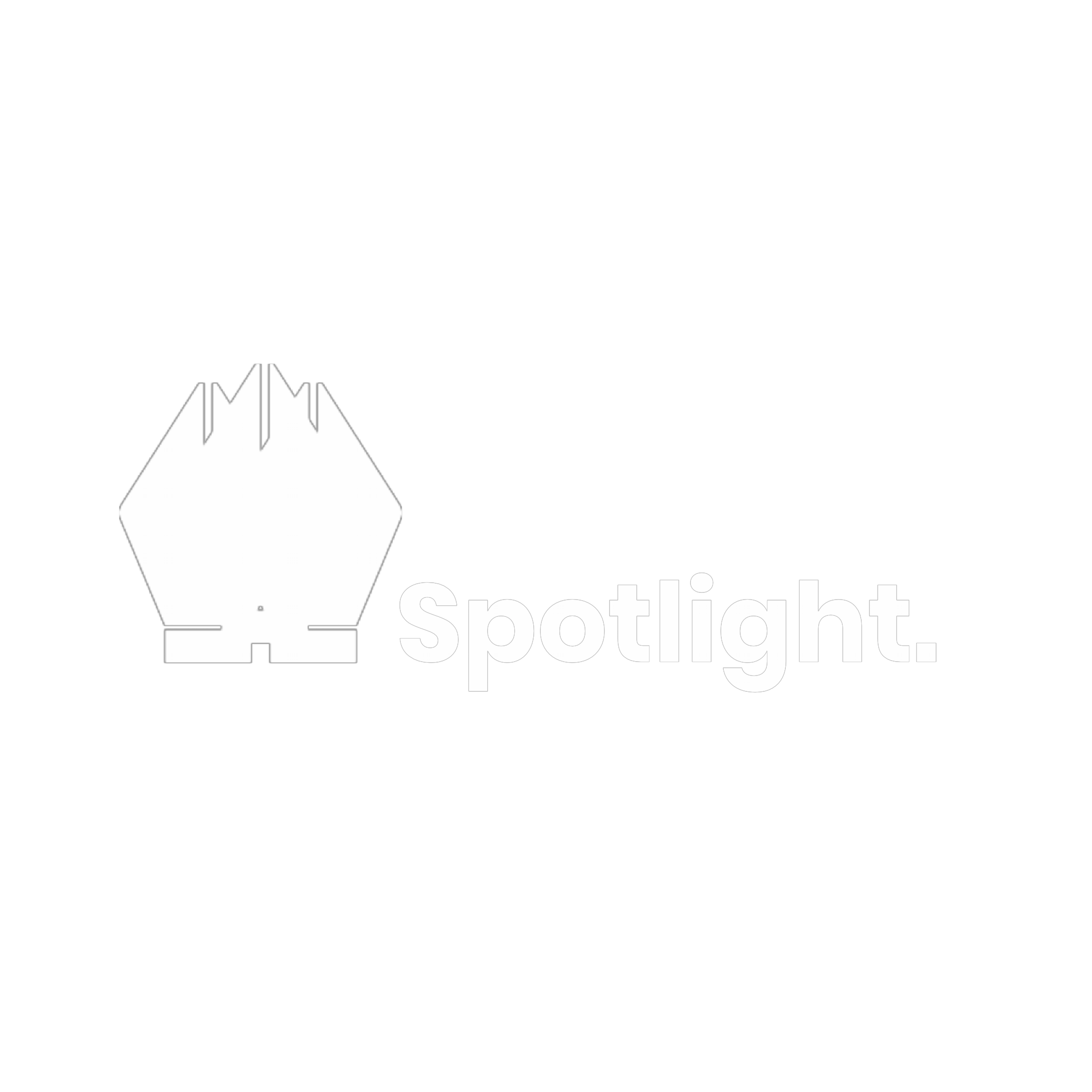 Spotlight Digital Agency